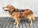 Non-stop dogwear Freemotion Harness Zuggeschirr für Hunde