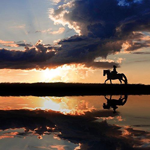 Apple iPhone 5s Housse étui coque protection Cheval Coucher de soleil Faire du cheval Étui en cuir marron