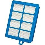AEG 900167769 ASF1W Allergie Plus Filtre lavable pour Aspirateur