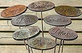 Schild Gartenschild Pflanztopfstecker Kräuter (Basilikum)