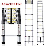 Plantex Telescoping Aluminium Extension Portable Foldable Ladder with EN131 Certified (3.8 m/12.5 ft, Silver)