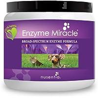Nusentia Enzyme Miracle Enzima Milagro   Canine enzimas (Polvo a Base de Plant Avanzado) - 100 Porciones