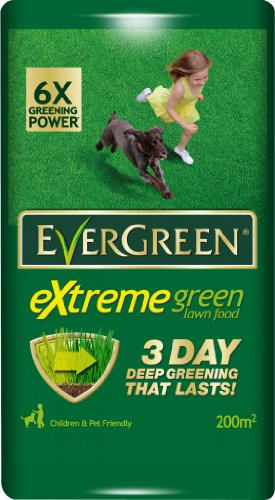 evergreen-extreme-green-bag-200m