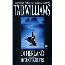 Otherland 2: River of Blue Fire (English Edition)