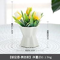 KPHY pastorale frisch keramik - flaschen blumen und pflanzen dekoriert topfpflanzen tisch miniascape eingerichtet. gelb