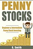 Penny Stocks: Beginner & Intermediate Penny Stock Investing (English Edition)