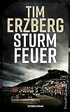 Sturmfeuer (Anna Krüger 2)