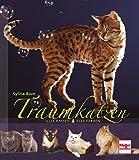 Traumkatzen: Alle Rassen - Alle Farben