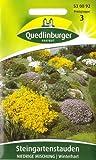 Steingarten - Mischung, Steingartenstauden, Saatgut, Sämereien, ca. 50 Samen
