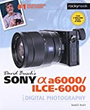 David Busch s Sony Alpha A6000/Ilce-6000 Guide to Digital Photography (The David Busch Camera Guide)