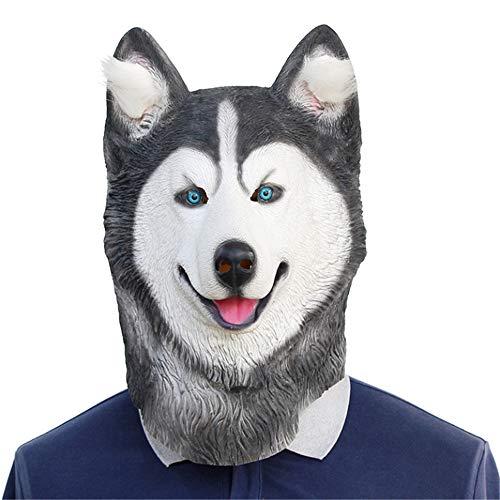Husky Kostüm Tragen - RENS Husky Halloween Latex Maske, Blöd Und Schön Hund Vollmaske, Neuheit Maskerade Kostüm Party Lustige Requisiten