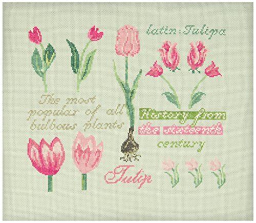 Anette Eriksson Tulip -