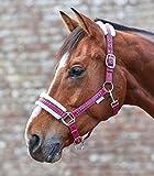 WALDHAUSEN Halfter Elegant, magenta, Pony