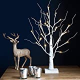2ft Indoor Pre-Lit Birch Tree with 24 Warm White LEDs by Lights4fun