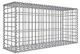 Niederberg Metall Gabione 100x50x30 cm Steinkorb Garten Gabionen Sichtschutz Zaun Maschen 5x10 cm Steinzaun