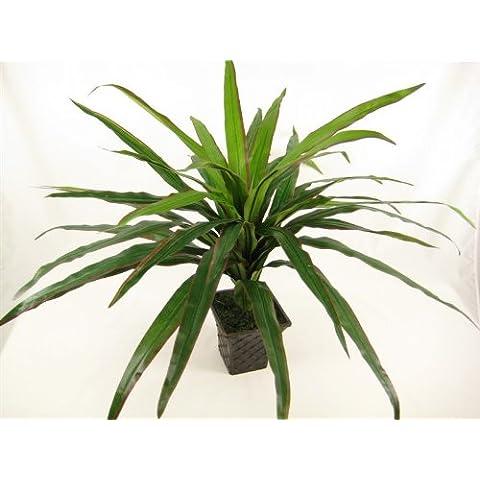 50 cm di seta artificiale dracaena per piante in vaso