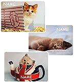 1 Stück _ Mal & Bastel & Knet - Unterlage / Platzdeckchen -  Katze / Kätzchen  - incl. Name - Platzdeckchen & Unterlage - 43 cm * 30 cm - Eßunterlage -  Ra..