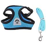 Fdit 4-farbig S/M / L Atmungsaktives Netz-Set für Haustiere, mit Gurt, Weste zum Laufen mit Bleiband Socialme-EU M#4 blau