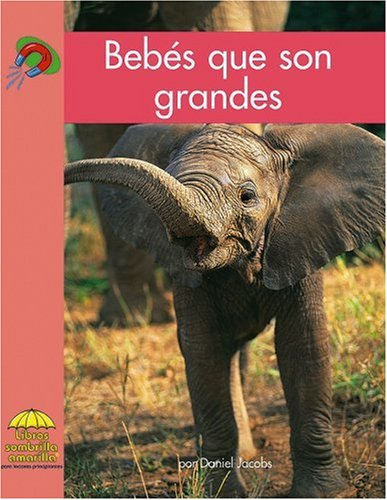 Bebes Que Son Grandes (Yellow Umbrella Books. Science. Spanish.)