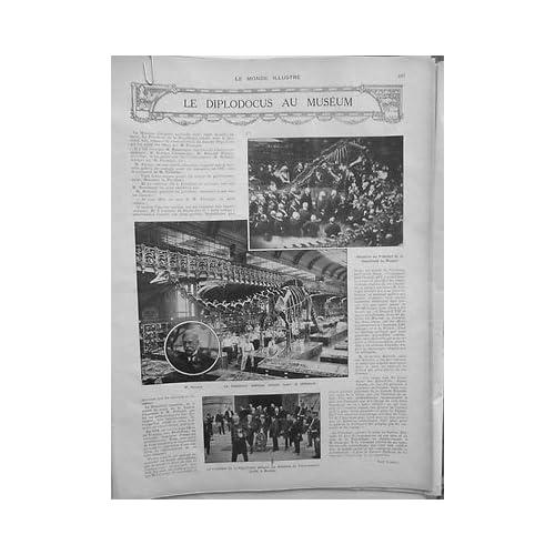 1908 MI6 DIPLODOCUS MUSEUM PRESIDENT REPUBLIQUE M.HOLLAND MEMBRE GOUVERNEMENT