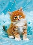 Clementoni 30106.5 - Puzzle, Fluffy Kitten, 500 Teile