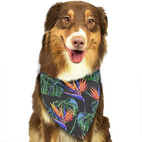 Hipiyoled Цветочные Джунгли Листья Pattern Мода Симпатичные Смешные Девушки Партии Мальчики Собака Бандана Модно