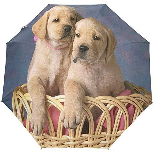 Merle House Regenschirm Cute Puppes Basket Wicker Golf gebraucht kaufen  Wird an jeden Ort in Deutschland