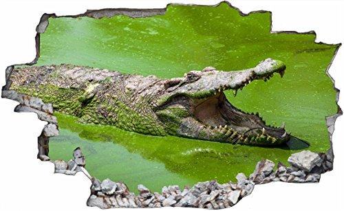 DesFoli Krokodil Alligator 3D Look Wandtattoo 70 x 115 cm Wanddurchbruch Wandbild Sticker Aufkleber C152 (Alligator-wandtattoo)