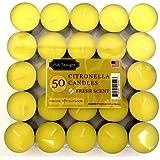 American Direct Citronella Tea Light Candle (Set Of 50)