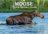 Moose of the Northern Woods 2018: Let's Follow the Moose of Quebec Northern Woods. Philippe Henry Presents 13 Photos of This Silent Giant. (Calvendo Animals)