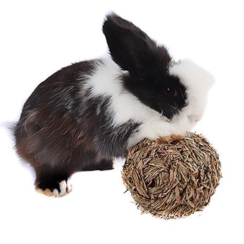 emours Hamster Mäuse Rennmäuse Kaninchen Woven Gras Ball Kauen Spielzeug spielen mit Glöckchen im Inneren