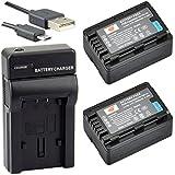 DSTE VW-VBK180 Li-ion Batería (2 paquetes) Traje y cargador micro USB para Panasonic HC-V10, HC-V100, HC-V100M, HC-V500, HC-V500M, HC-V700, HC-V700M, HDC-HS60, HDC-HS80, HDC-SD40, HDC-SD60, HDC-SD80, HDC-SD90