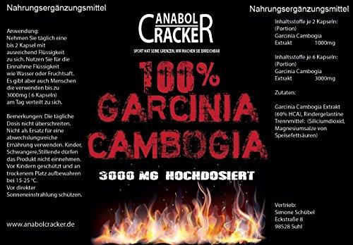 500 Kapseln – Garcinia Cambogia Extrakt, 3000mg pro Tagesdosis, 60% HCA hochdosiert, Reine und Pure Premiumqualität aus Deutschland, Appetitzügler Fettverbrennung Diät Abnehmen
