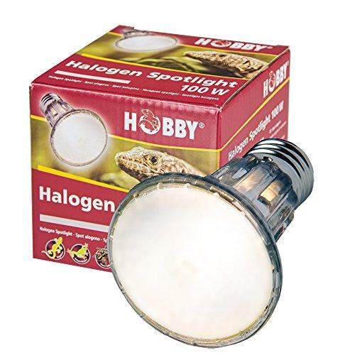 Hobby 37391 Diamond Halogen Spotlight, 50 W (Lampe Halogen-schmale Strahler)