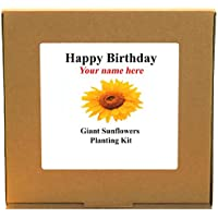 Personalised Happy Birthday Giant Sunflower Planting Kit - Unusual Indoor Gardening Gift