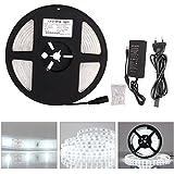 Roleadro Tiras LED Iluminación 5M Impermeable IP65 2835 12V Con Alimentación 300 Leds Blanco Frio 6000K Adhesivas Led Strip para Decoración del Hogar