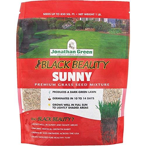 seedsown Samen Keimung: Jonathan Green Black Beauty Volle Sonne Grass Seed Mixture -