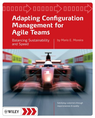 Adapting Configuration Management for Agile Teams: Balancing Sustainability and Speed (Software-entwicklung-management)