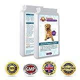 Uploria Pet World Supplemento Probiotico per Lo Stomaco Sensibile dei Cani | 120 Pastiglie Aromatizzate al Pollo | È Anche Un Integratore per Il Sistema Immunitario