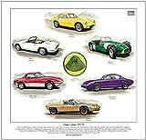 goldenera Classic Lotus Print–– 1957–75Modelle–Sieben, Elite, Elan, Elan Plus 2, Elan Sprint & Europa. Fertig zum Rahmen.