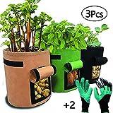 LIBHW 3 Pack Potato Crescere Borse 4 Gallon orticoltura Borse con Patta e Maniglie Non Tessuto Borse da Giardino per i pomodori, Carote, Cipolla, con 2 Guanti Coppia Giardino,6Pcs