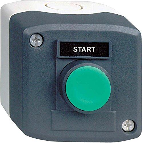 Schneider Electric xald101h29estación de control, constn grnpbno FLSH MRK Start