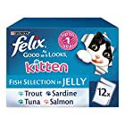 Felix As Good As It Looks Kitten Fish Selection Cat Food, 12 x 100 g