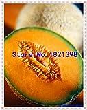 Go Garden 10Pcs Super Big Sweet Honey-Dew Melon Semillas Hami Melon Semillas Frutas Semillas Cantalupo Melón Jumbo Melón Herencia Suculentas Plantas: 2