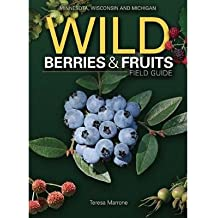Wild Berries & Fruits Field Guide: Minnesota, Wisconsin and Michigan (Paperback) - Common