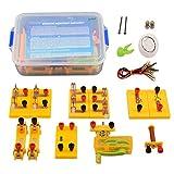 astarye Kit di modelli di esperimenti elettromagnetici fisici Kit di sussidi didattici per l'apprendimento di giocattoli educativi di scoperta elettrica fai-da-te