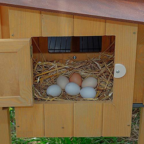 Ferplast 57096000 Hühnerstall HEN HOUSE 30, für bis zu 6 Hennen, Holzkonstruktion, Maße: 162 x 100 x 110 cm - 4