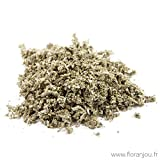 Floranjou - Sauge feuille BIO - 250 g - Nom botanique : Salvia officinalis