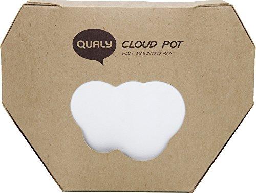 Cloud Wandtattoo (Topf Wandtattoo Cloud-Geschenk Maestro)