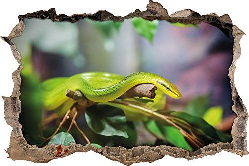 Raue grüne Schlange Wanddurchbruch im 3D-Look, Wand- oder Türaufkleber, Wandsticker, Wandtattoo, Wanddekoration